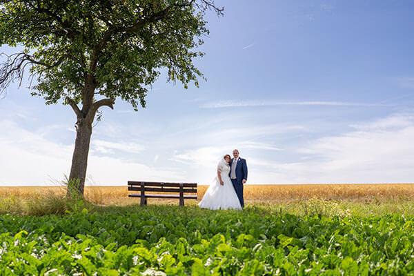 Brautpaar im Feld neben einer Bank unter einem Baum.