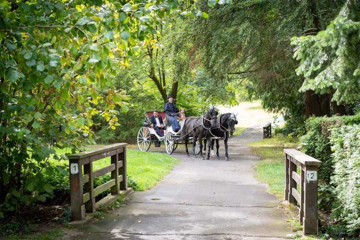 Hochzeitskutsche kommt mit Hochzeitspaar am Park vom Schloss in Rauischholzhausen an